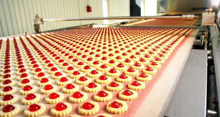 bande transporteuse biscuiterie industrielle